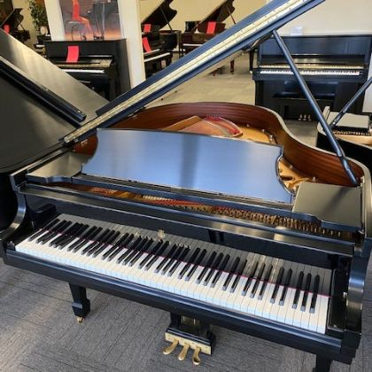 /pianos/used/601244-request